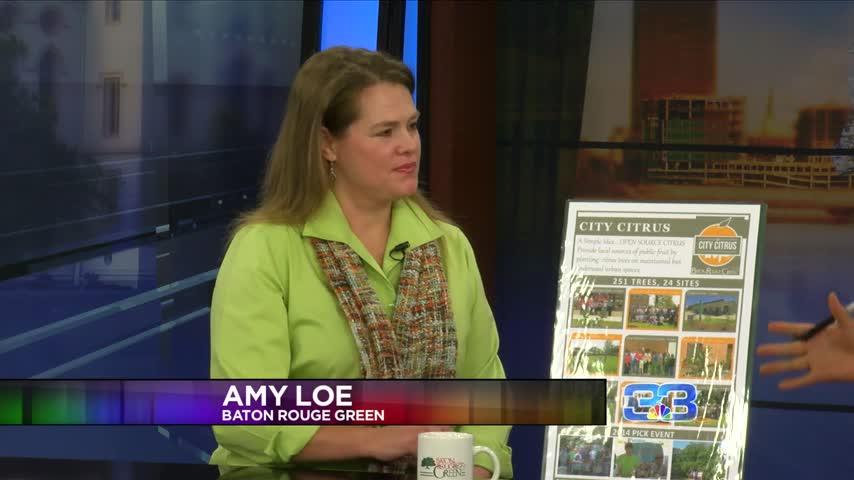 Amy Loe talks nature based community programs_20151116135903
