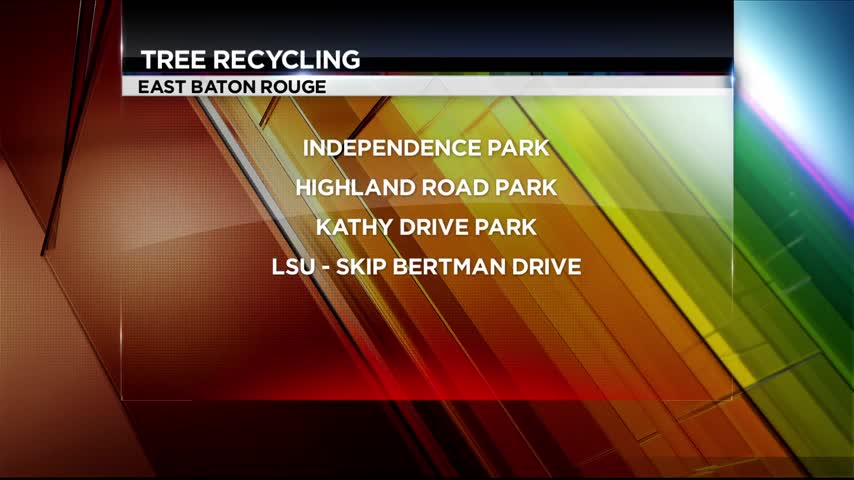 Christmas tree recycling in Baton Rouge_20160107134403