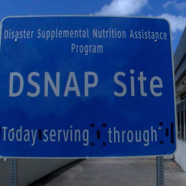 DSNAP.jpg