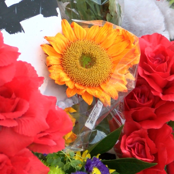 flowers _1470952146119.jpg