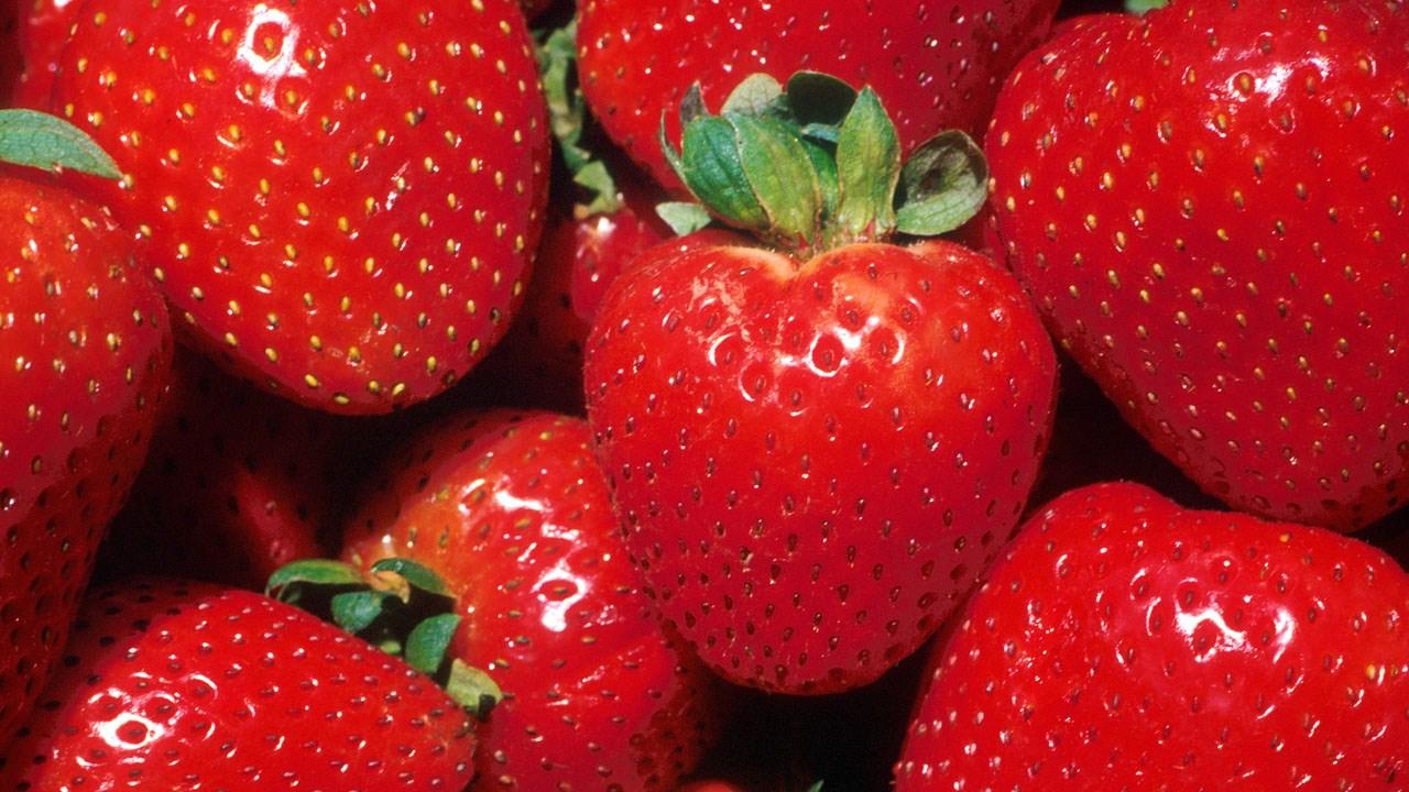 strawberry_1491605707479.jpg