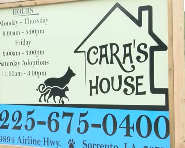 Cara's House Could Be Forced to Close its Doors