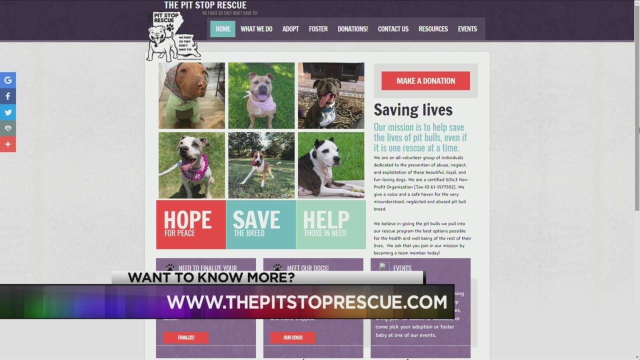 Pit Stop Rescue