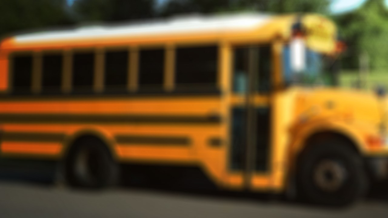 Pleasant 7 Year Old Left Unattended On Ebr School Bus Home Interior And Landscaping Ymoonbapapsignezvosmurscom