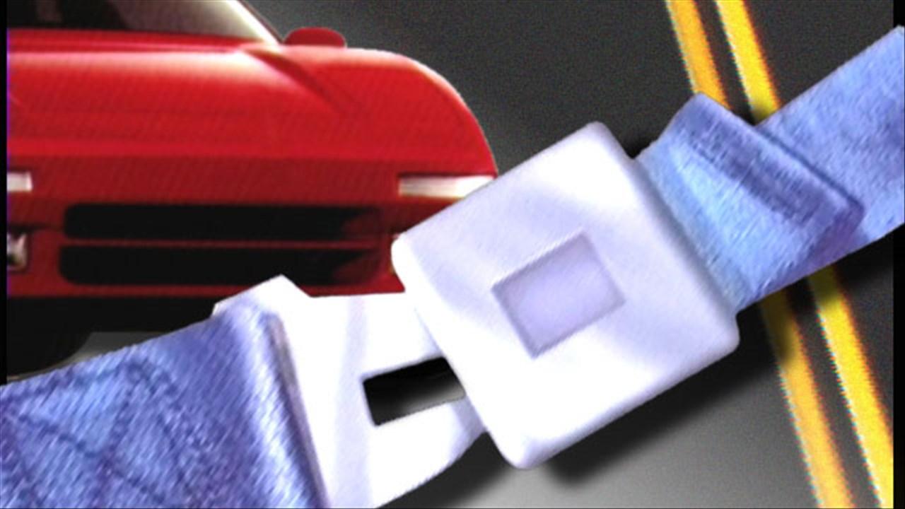 seatbelt_1546293445949.jpg