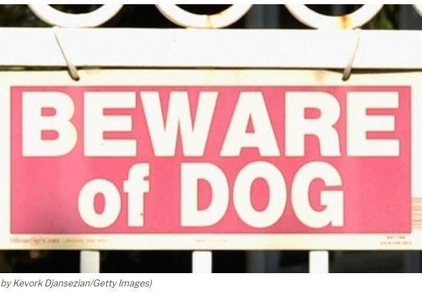 Beware of Dog_1552321804985.JPG.jpg