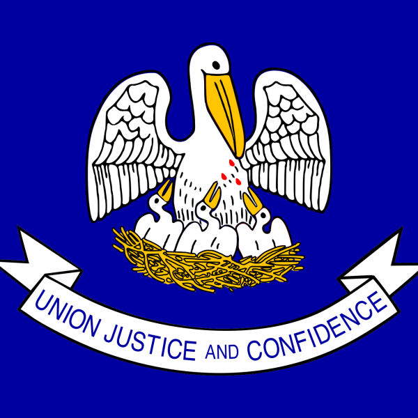 Louisiana_state_flag_1557851287564-22991016.png