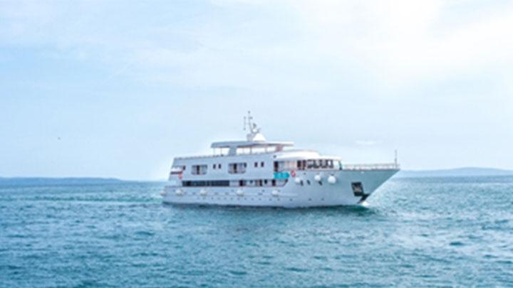 cruise_1559246430802.jpg