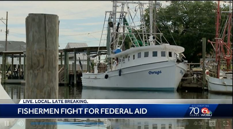 New bill gives new hope to Gulf Coast fishermen amid seafood crisis